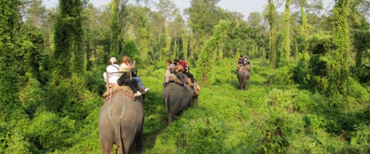 À la découverte de Rolwaling et de la Jungle Safari au Népal