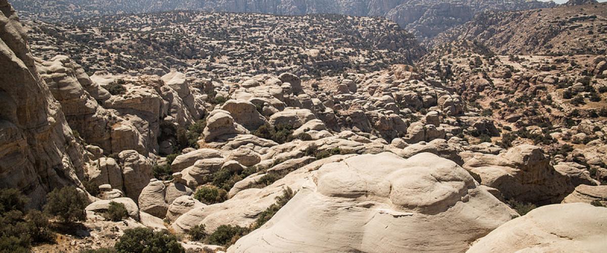 Les 5 réserves naturelles majeures de la Jordanie
