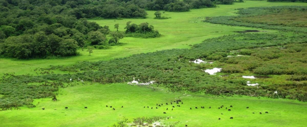 Que de belles découvertes et des aventures merveilleuses à vivre en Tanzanie