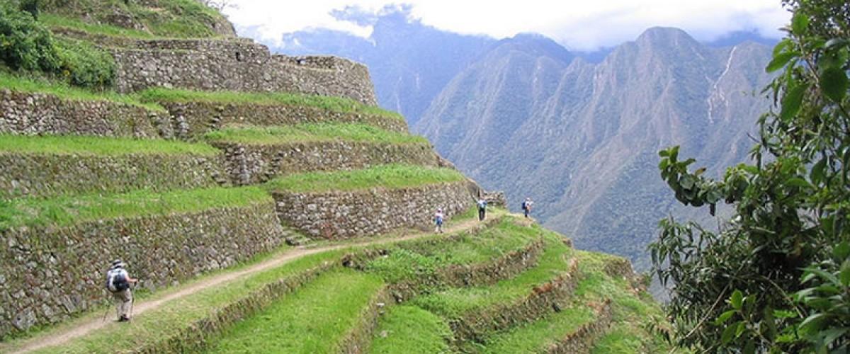 Profiter d'une randonnée au Pérou, entre nature luxuriante et ruines culturelles