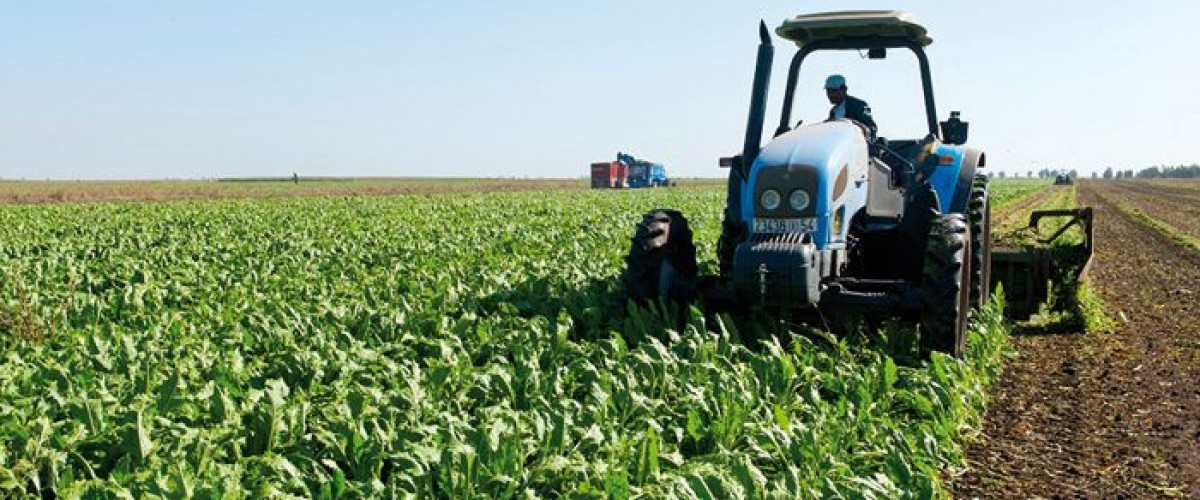 L'agriculture de demain